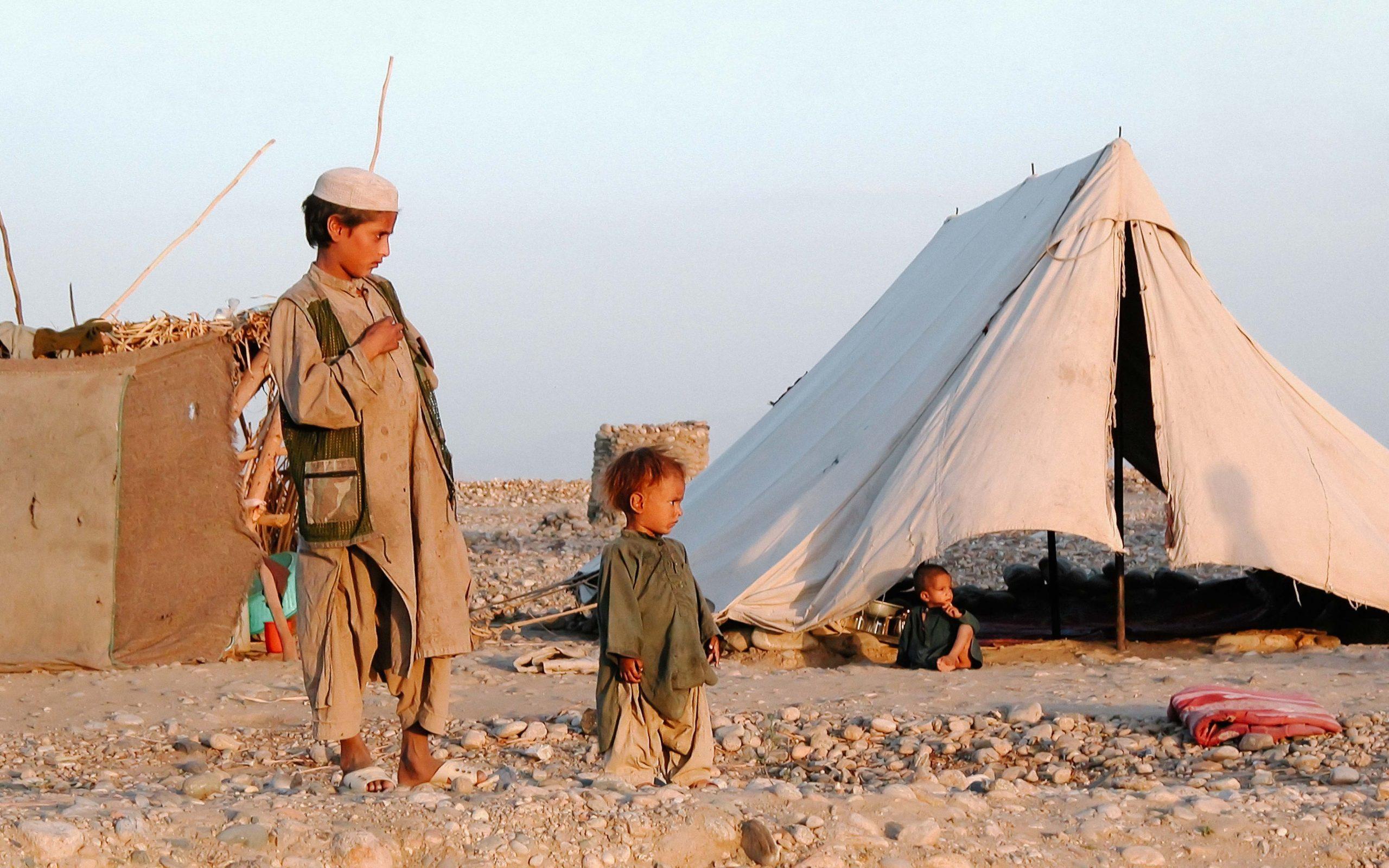 DACAAR i Globalnyt: Afghanistan saver sin egen gren over